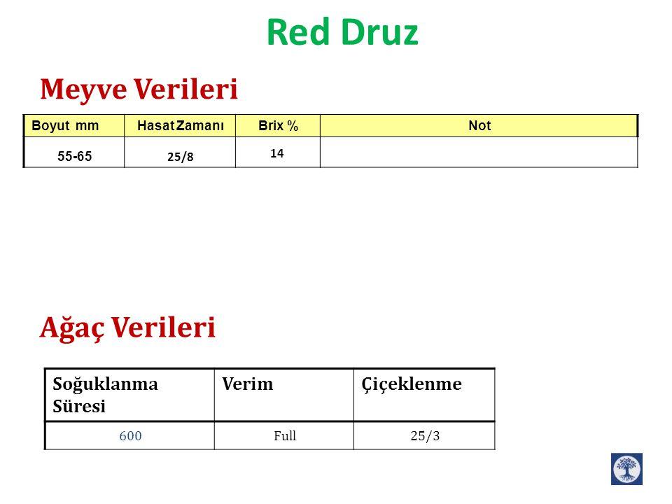 Red Druz ÇiçeklenmeVerimSoğuklanma Süresi 25/3Full600 Meyve Verileri Ağaç Verileri NotBrix %Hasat ZamanıBoyut mm 14 25/8 55-65