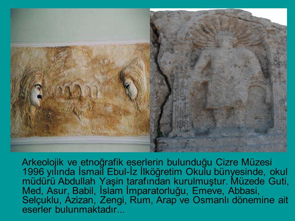 Arkeolojik ve etnoğrafik eserlerin bulunduğu Cizre Müzesi 1996 yılında İsmail Ebul-İz İlköğretim Okulu bünyesinde, okul müdürü Abdullah Yaşin tarafınd