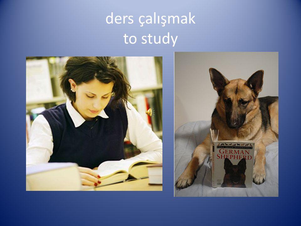 ders çalışmak to study