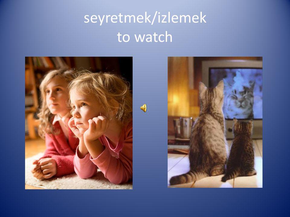 seyretmek/izlemek to watch