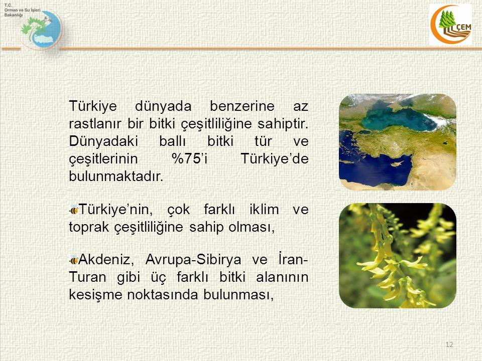 Türkiye dünyada benzerine az rastlanır bir bitki çeşitliliğine sahiptir.