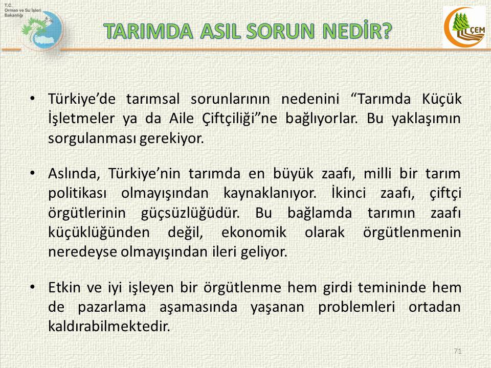 Türkiye'de tarımsal sorunlarının nedenini Tarımda Küçük İşletmeler ya da Aile Çiftçiliği ne bağlıyorlar.