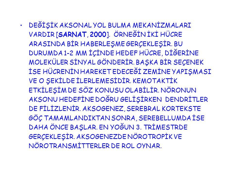 DEĞİŞİK AKSONAL YOL BULMA MEKANİZMALARI VARDIR [SARNAT, 2000]. ÖRNEĞİN İKİ HÜCRE ARASINDA BİR HABERLEŞME GERÇEKLEŞİR. BU DURUMDA 1-2 MM İÇİNDE HEDEF H