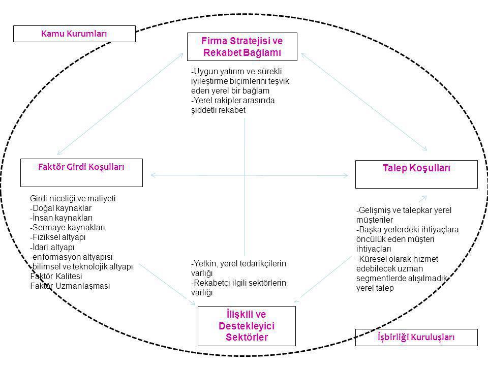 Firma Stratejisi ve Rekabet Bağlamı Faktör Girdi Koşulları Talep Koşulları İlişkili ve Destekleyici Sektörler Girdi niceliği ve maliyeti -Doğal kaynaklar -İnsan kaynakları -Sermaye kaynakları -Fiziksel altyapı -İdari altyapı -enformasyon altyapısı -bilimsel ve teknolojik altyapı Faktör Kalitesi Faktör Uzmanlaşması -Uygun yatırım ve sürekli iyileştirme biçimlerini teşvik eden yerel bir bağlam -Yerel rakipler arasında şiddetli rekabet -Gelişmiş ve talepkar yerel müşteriler -Başka yerlerdeki ihtiyaçlara öncülük eden müşteri ihtiyaçları -Küresel olarak hizmet edebilecek uzman segmentlerde alışılmadık yerel talep -Yetkin, yerel tedarikçilerin varlığı -Rekabetçi ilgili sektörlerin varlığı İşbirliği Kuruluşları Kamu Kurumları