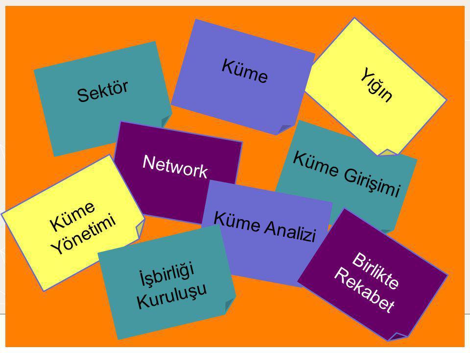 Sektör Küme Girişimi Yığın Network Küme Küme Analizi Küme Yönetimi Birlikte Rekabet İşbirliği Kuruluşu
