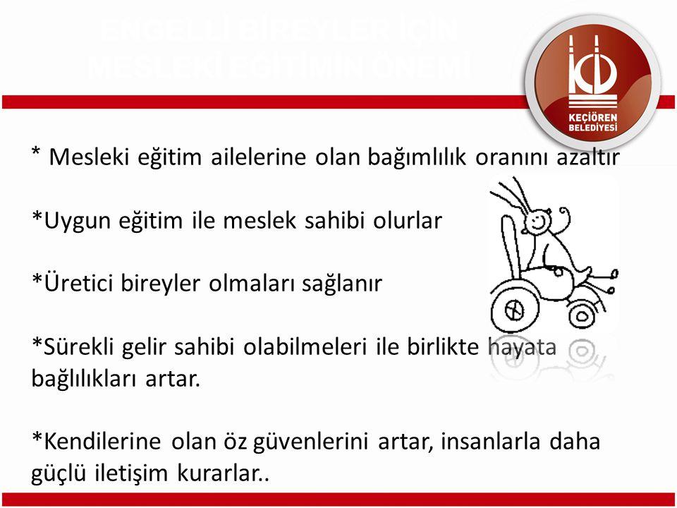 İşitme Engelliler Çok Programlı Liseleri, Ortopedik Engelliler Meslek Liseleri, Zihinsel engellilere yönelik Meslekî Eğitim Merkezleri, İş Eğitim Merkezleri Yetişkin Zihinsel Engelliler İş Eğitim Merkezleri Türkiye İş Kurumu ve MEB Çıraklık Yaygın Eğitim Genel Müdürlüğü ENGELLİLERE YÖNELİK MESLEKİ EĞİTİM VEREN KURULUŞLAR