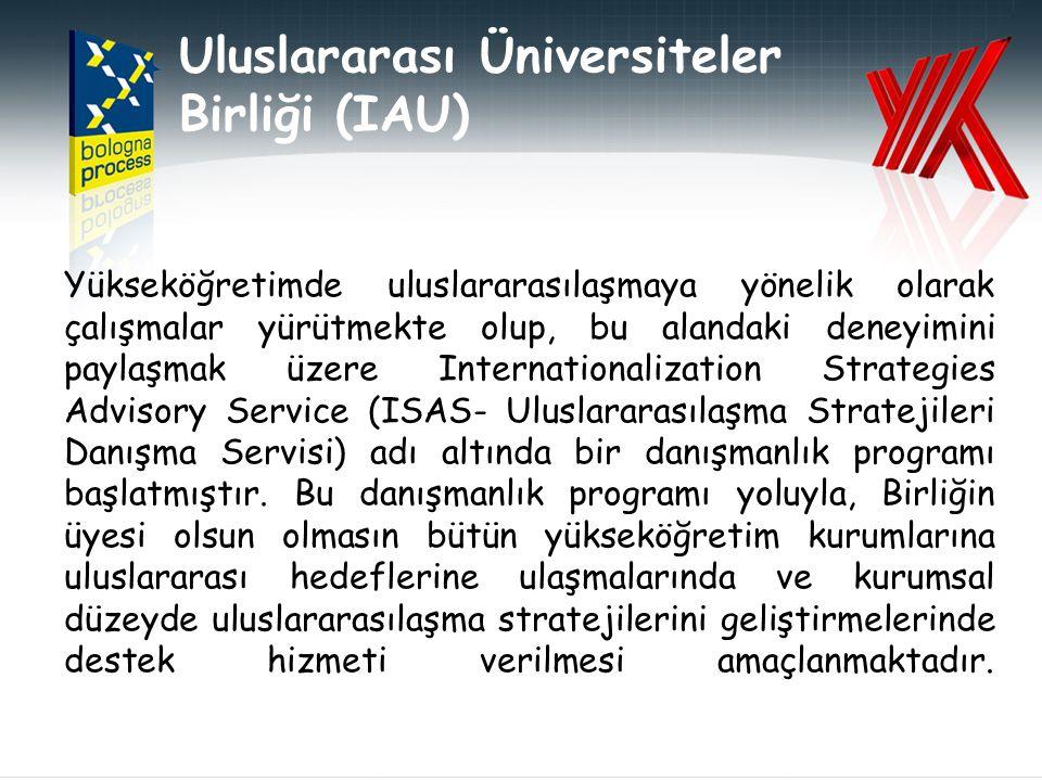Uluslararası Üniversiteler Birliği (IAU) Yükseköğretimde uluslararasılaşmaya yönelik olarak çalışmalar yürütmekte olup, bu alandaki deneyimini paylaşmak üzere Internationalization Strategies Advisory Service (ISAS- Uluslararasılaşma Stratejileri Danışma Servisi) adı altında bir danışmanlık programı başlatmıştır.