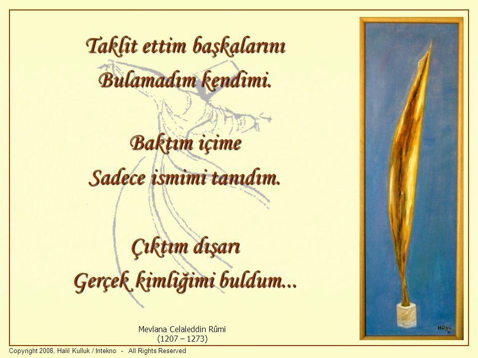 Yenişim ve Girişim Copyright 2008, Halil Kulluk / Intekno - All Rights Reserved