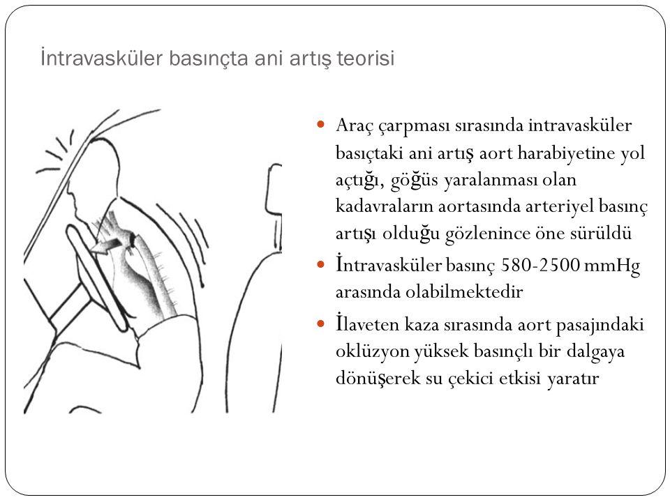 İntravasküler basınçta ani artış teorisi Araç çarpması sırasında intravasküler basıçtaki ani artı ş aort harabiyetine yol açtı ğ ı, gö ğ üs yaralanmas