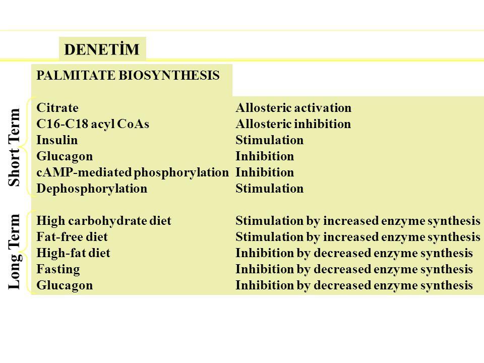 Å¢¢Å@Ä-f9«1Ü! PALMITATE BIOSYNTHESIS Citrate C16-C18 acyl CoAs Insulin Glucagon cAMP-mediated phosphorylation Dephosphorylation High carbohydrate diet