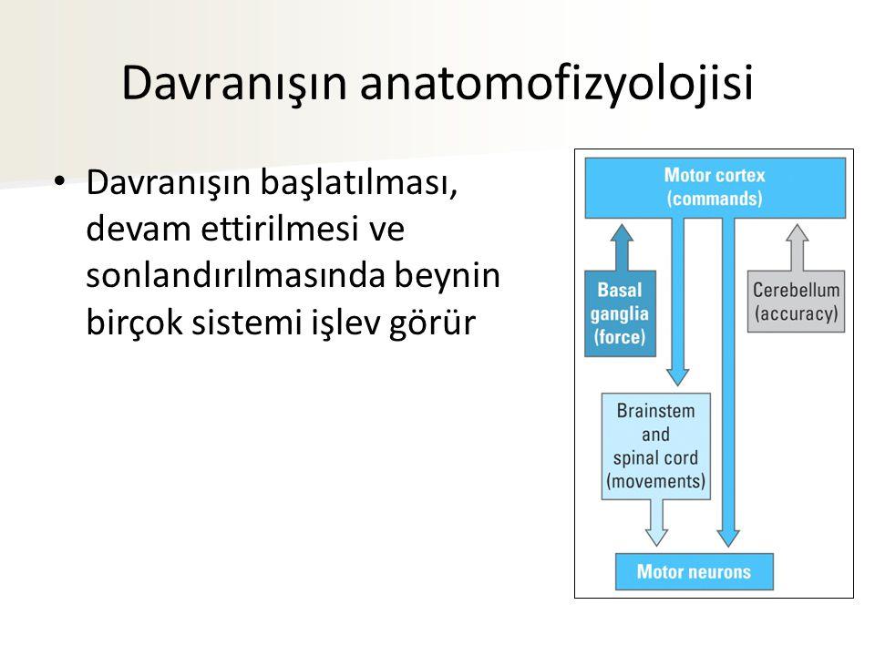 Davranışın anatomofizyolojisi Davranışın başlatılması, devam ettirilmesi ve sonlandırılmasında beynin birçok sistemi işlev görür