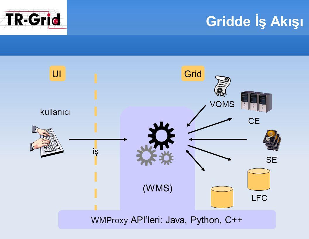 Gridde İş Akışı (WMS) UIGrid iş kullanıcı SE CE LFC VOMS BDII WMProxy API'leri: Java, Python, C++
