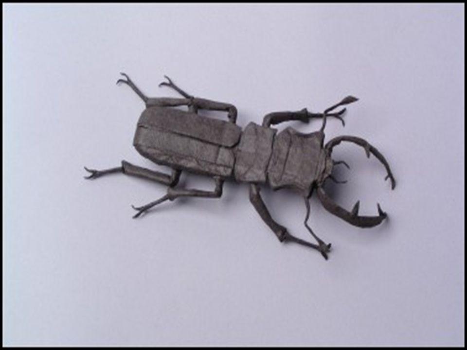 Modern origami olarak da adlandırılan bu tür origami türlerinde yapıştırma ve kesme serbest bırakılmıştır.Origami yi krigamiden ayıran özelliği krigaminin simetrik origaminin ise şekil yapma biçimlendirme sanatı olmasıdır.Modern origami