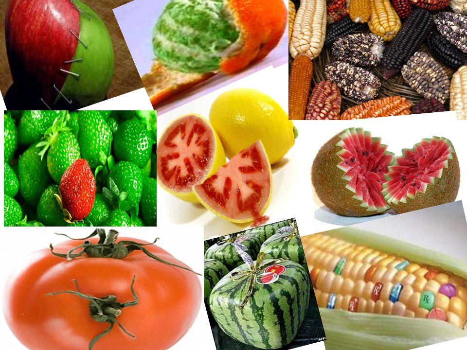 Transgenik bitki nedir.