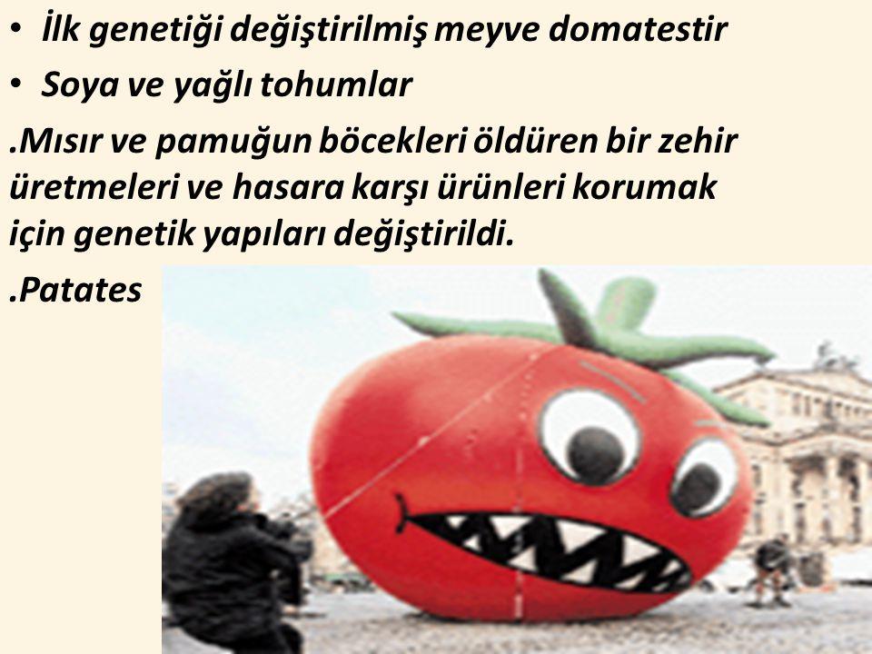 İlk genetiği değiştirilmiş meyve domatestir Soya ve yağlı tohumlar.Mısır ve pamuğun böcekleri öldüren bir zehir üretmeleri ve hasara karşı ürünleri korumak için genetik yapıları değiştirildi..Patates