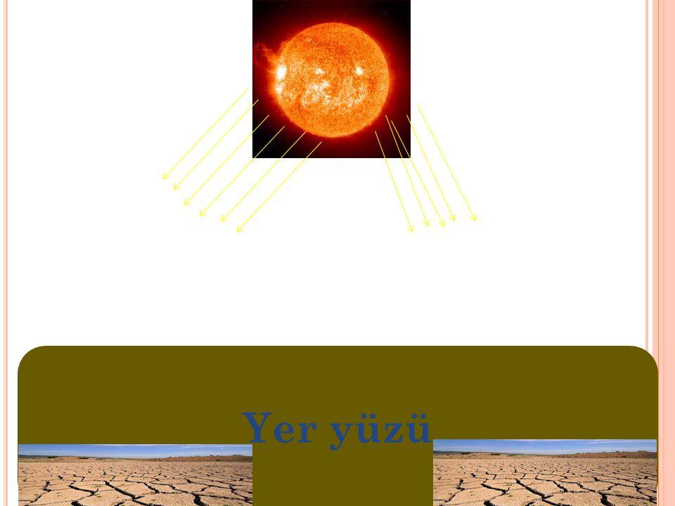 Yer yüzü