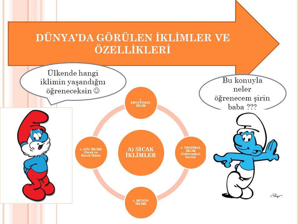 DÜNYA'DA GÖRÜLEN İKLİMLER VE ÖZELLİKLERİ C) SOĞUK İKLİMLER 1.