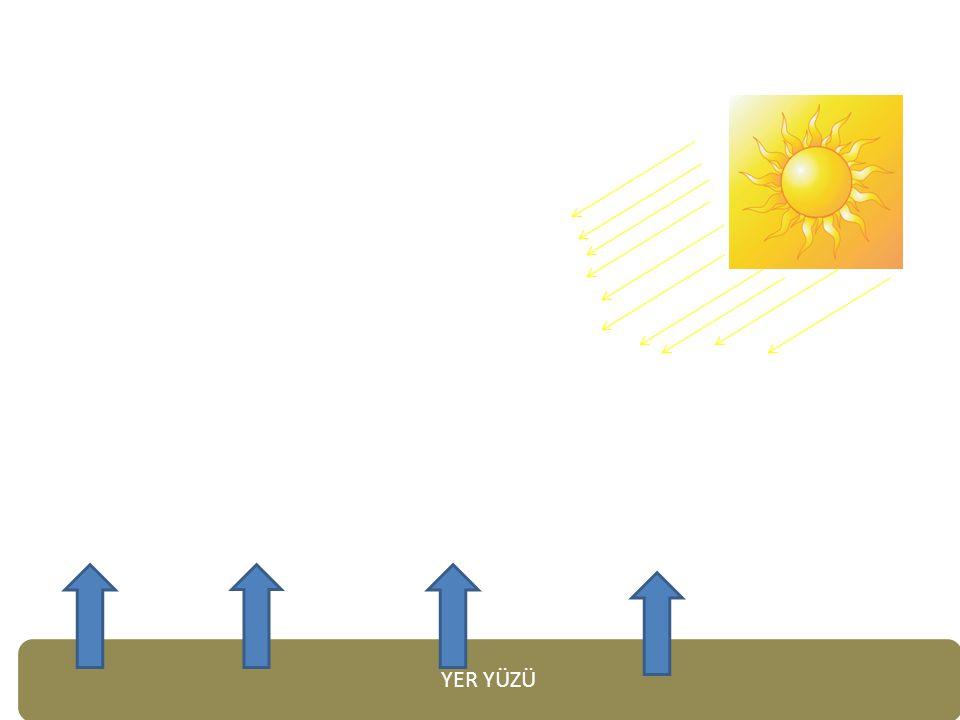 2. KUTUP İKLİMİ 2- Ortalama yağış 200 mm'dir. Bitki örtüsü yoktur. Zemin buzullarla kaplıdır.