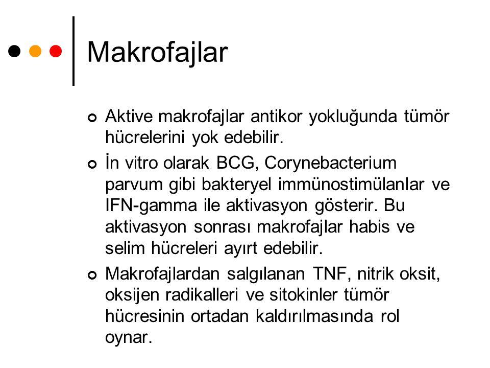 Makrofajlar Aktive makrofajlar antikor yokluğunda tümör hücrelerini yok edebilir. İn vitro olarak BCG, Corynebacterium parvum gibi bakteryel immünosti