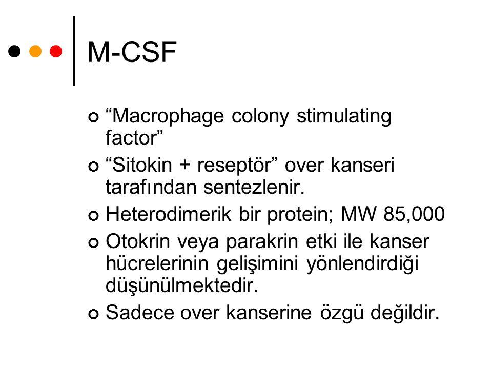 """M-CSF """"Macrophage colony stimulating factor"""" """"Sitokin + reseptör"""" over kanseri tarafından sentezlenir. Heterodimerik bir protein; MW 85,000 Otokrin ve"""