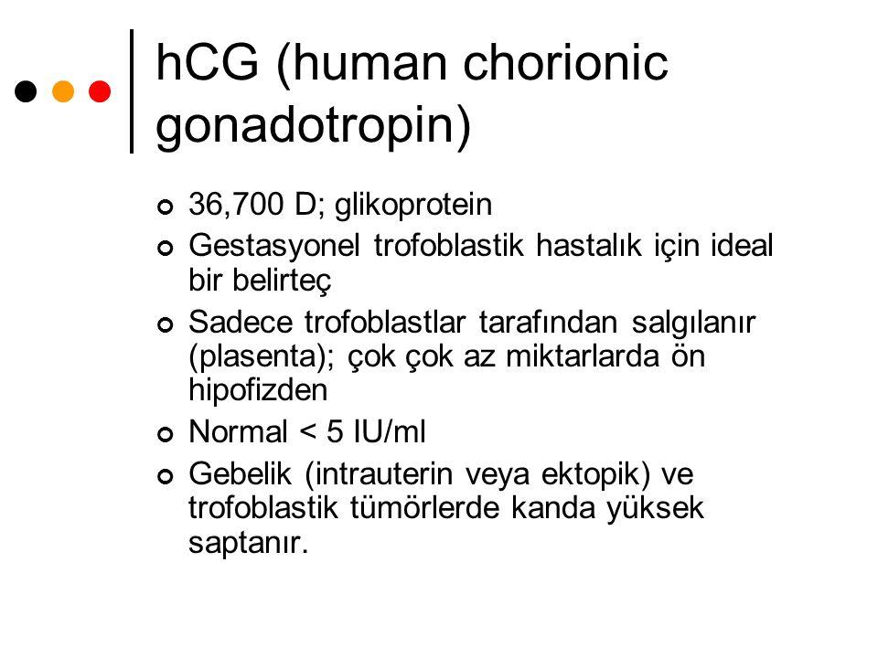 hCG (human chorionic gonadotropin) 36,700 D; glikoprotein Gestasyonel trofoblastik hastalık için ideal bir belirteç Sadece trofoblastlar tarafından sa