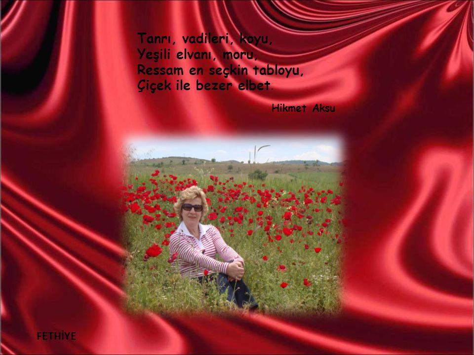 İZMİR Balçova Termal Tesisleri Öyküleri, şiirleri, En güzelim şehirleri, Herkes kendi hünerini, Çiçek ile bezer elbet.