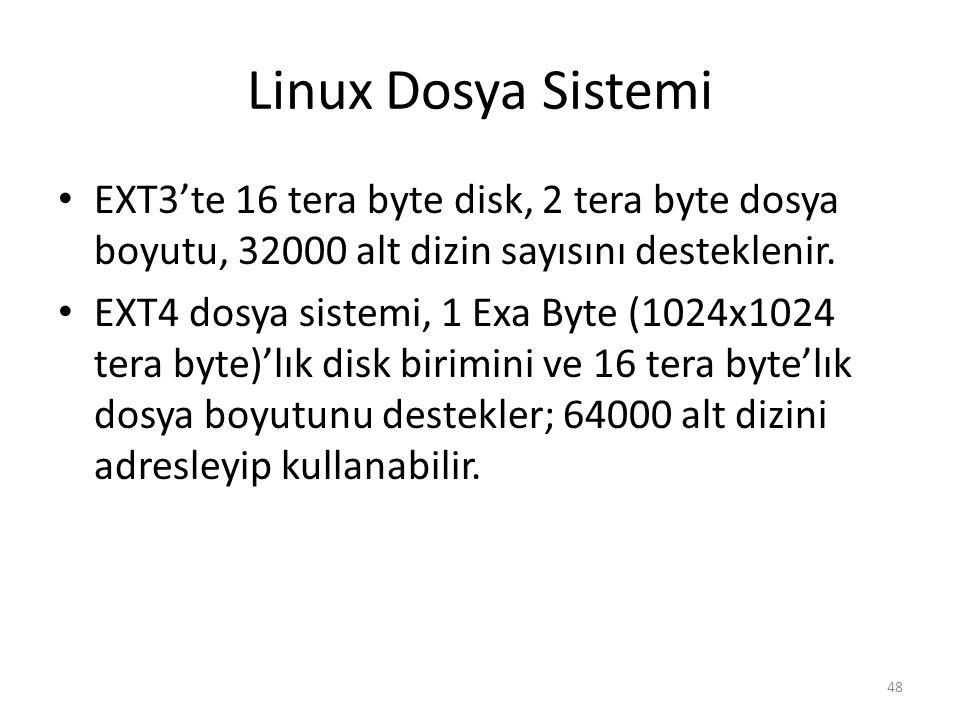 Linux Dosya Sistemi EXT3'te 16 tera byte disk, 2 tera byte dosya boyutu, 32000 alt dizin sayısını desteklenir. EXT4 dosya sistemi, 1 Exa Byte (1024x10