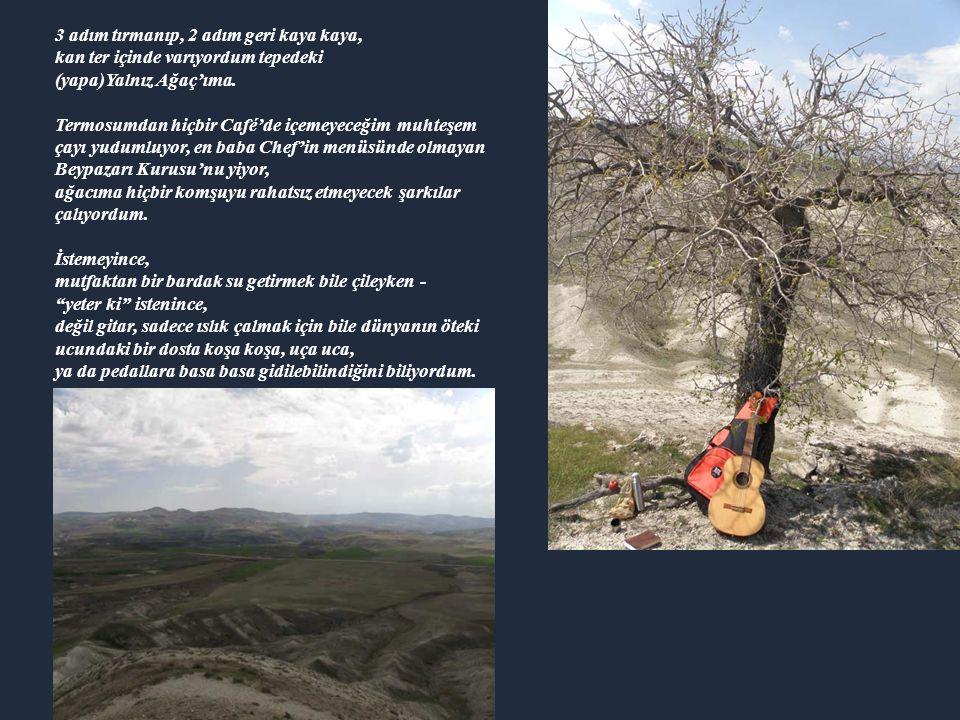 3 adım tırmanıp, 2 adım geri kaya kaya, kan ter içinde varıyordum tepedeki (yapa)Yalnız Ağaç'ıma.