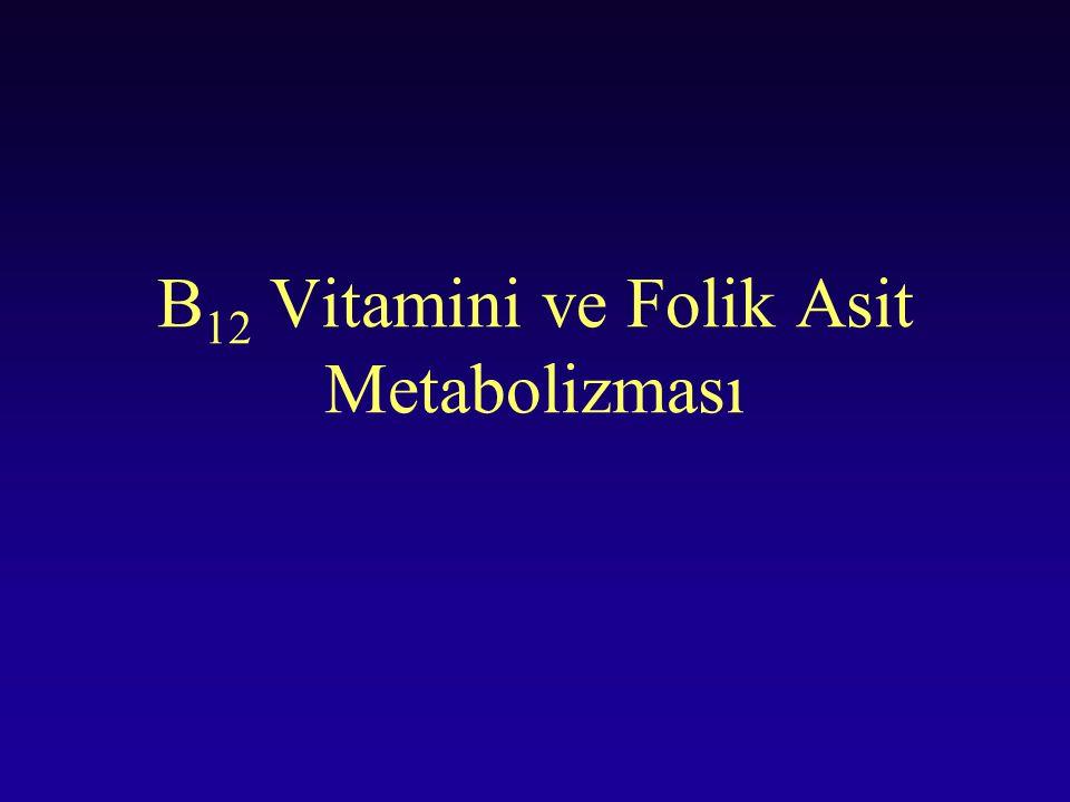 B 12 Vitamini ve Folik Asit Metabolizması