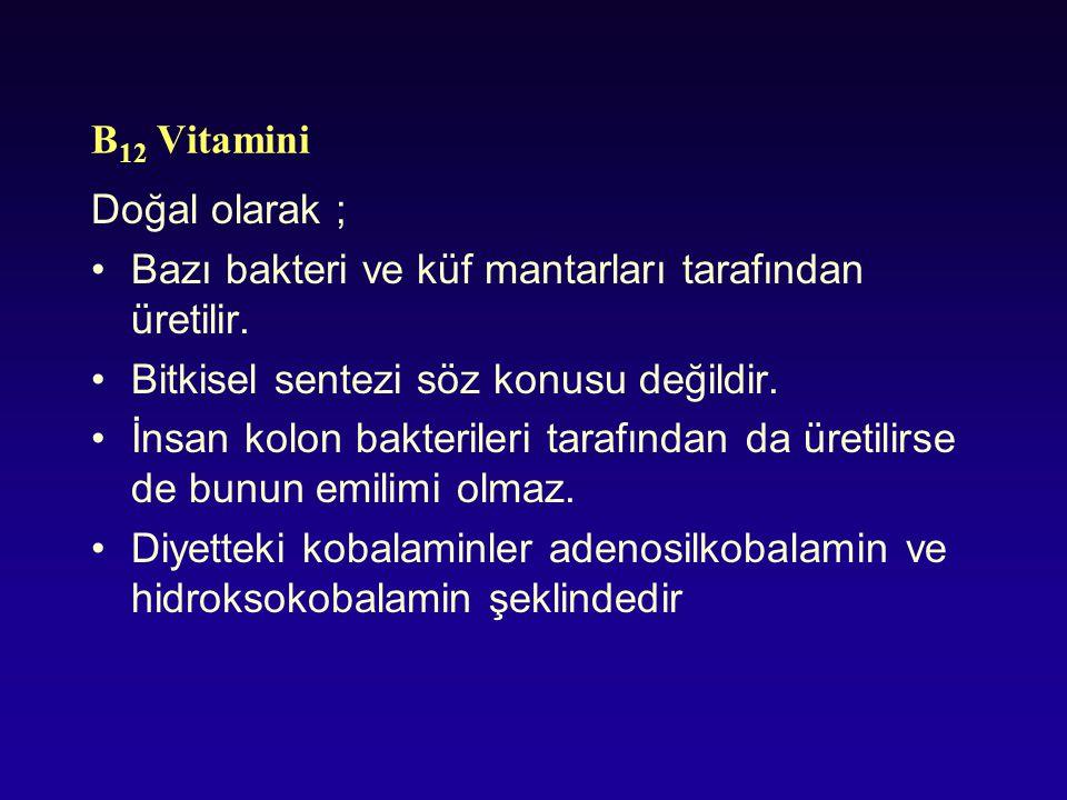 B 12 Vitamini Doğal olarak ; Bazı bakteri ve küf mantarları tarafından üretilir. Bitkisel sentezi söz konusu değildir. İnsan kolon bakterileri tarafın
