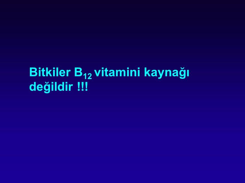 Bitkiler B 12 vitamini kaynağı değildir !!!