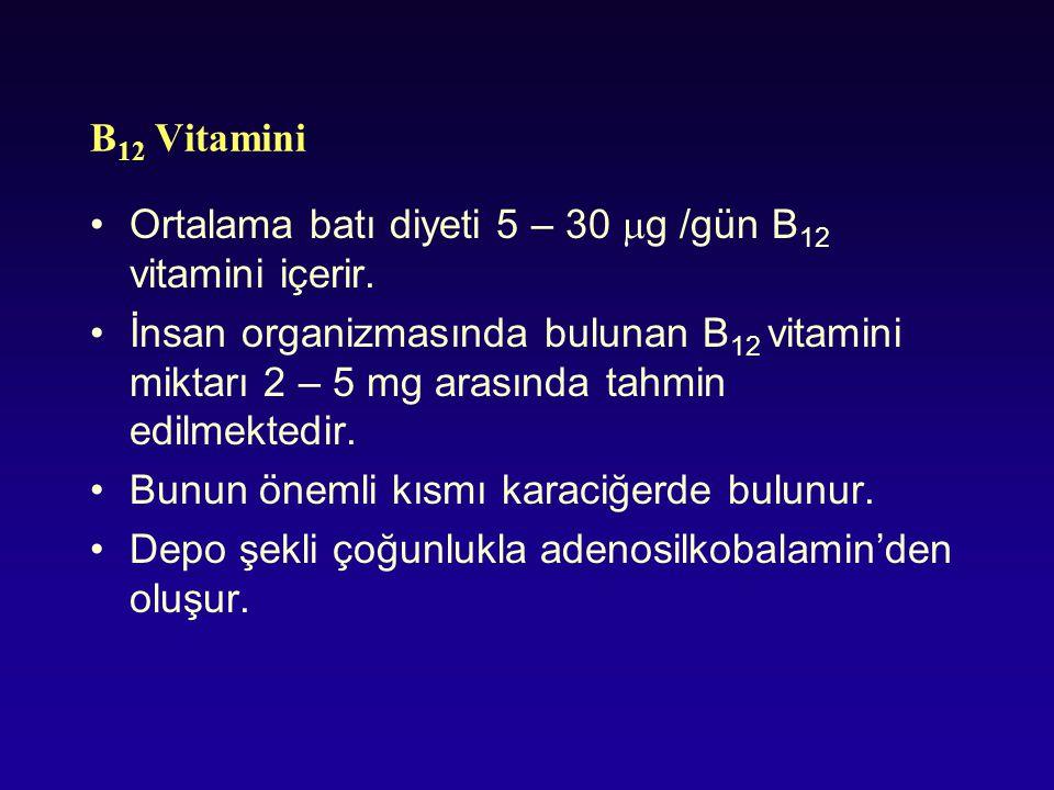 B 12 Vitamini Ortalama batı diyeti 5 – 30  g /gün B 12 vitamini içerir. İnsan organizmasında bulunan B 12 vitamini miktarı 2 – 5 mg arasında tahmin e