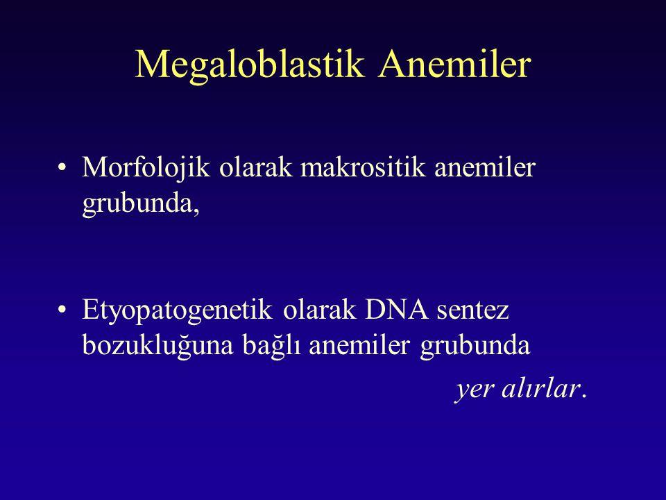 Megaloblastik Anemiler Morfolojik olarak makrositik anemiler grubunda, Etyopatogenetik olarak DNA sentez bozukluğuna bağlı anemiler grubunda yer alırl