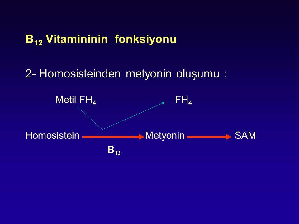 B 12 Vitamininin fonksiyonu 2- Homosisteinden metyonin oluşumu : Metil FH 4 FH 4 Homosistein Metyonin SAM B 1 2