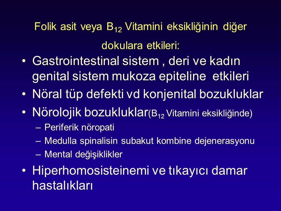 Folik asit veya B 12 Vitamini eksikliğinin diğer dokulara etkileri: Gastrointestinal sistem, deri ve kadın genital sistem mukoza epiteline etkileri Nö