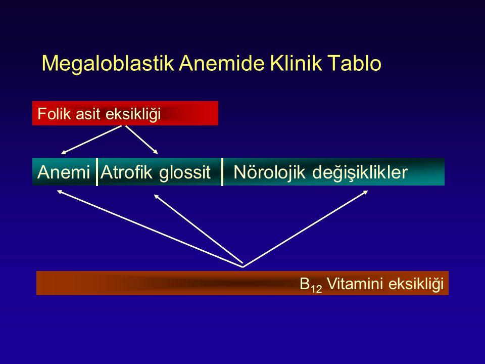Megaloblastik Anemide Klinik Tablo Anemi Atrofik glossit Nörolojik değişiklikler Folik asit eksikliği B 12 Vitamini eksikliği