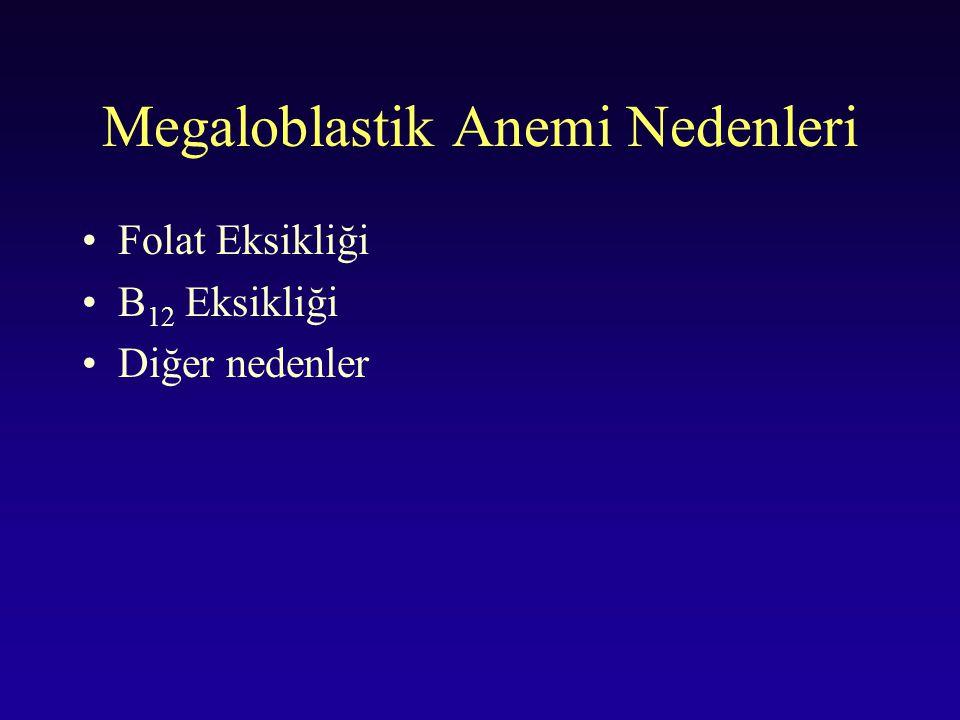 Megaloblastik Anemi Nedenleri Folat Eksikliği B 12 Eksikliği Diğer nedenler