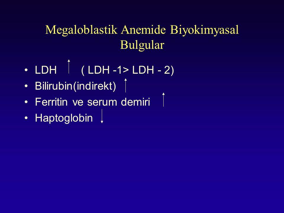 Megaloblastik Anemide Biyokimyasal Bulgular LDH( LDH -1> LDH - 2) Bilirubin(indirekt) Ferritin ve serum demiri Haptoglobin
