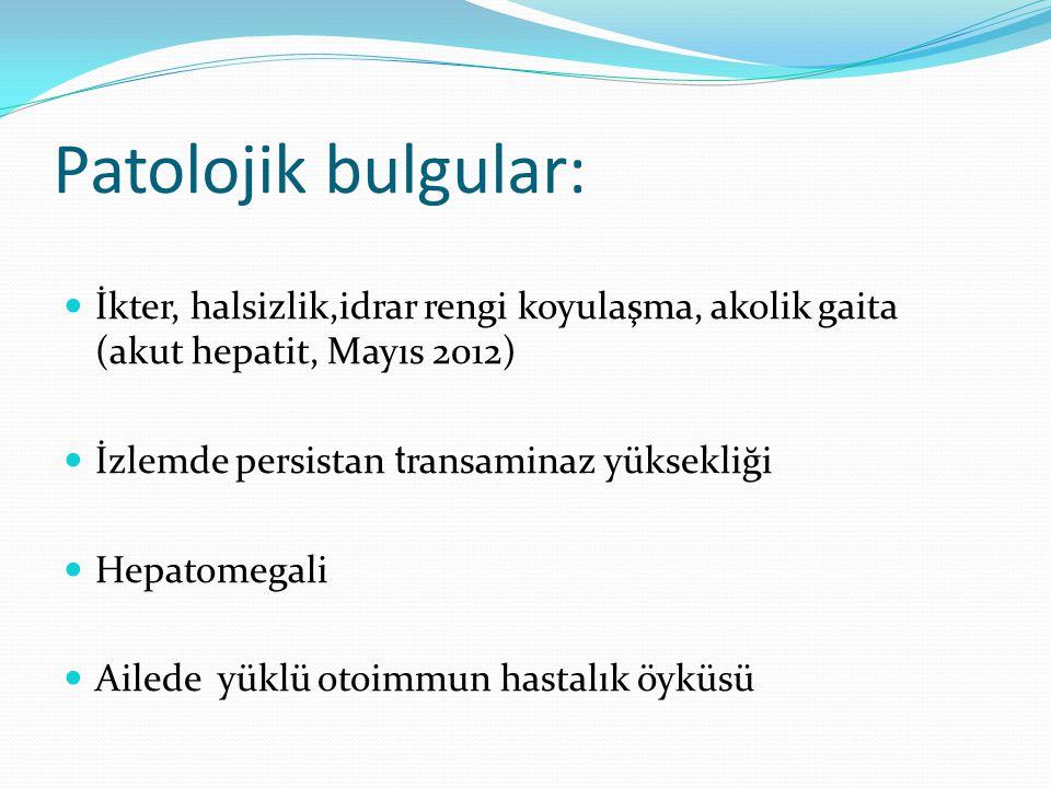 Patolojik bulgular: İkter, halsizlik,idrar rengi koyulaşma, akolik gaita (akut hepatit, Mayıs 2012) İzlemde persistan t ransaminaz yüksekliği Hepatome