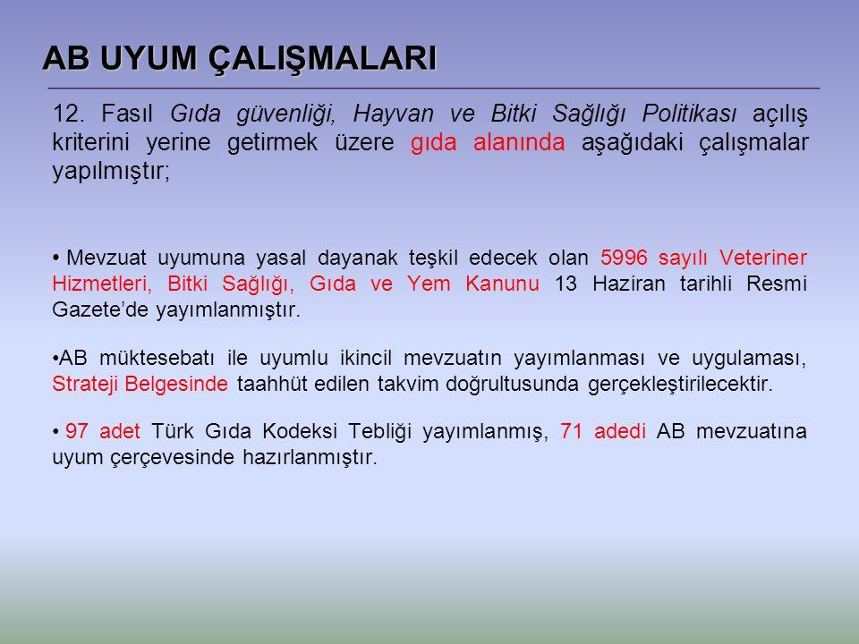 AB UYUM ÇALIŞMALARI 12.