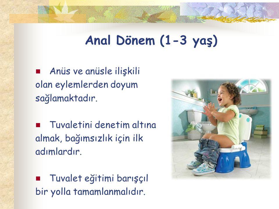 Anal Dönem (1-3 yaş) Anüs ve anüsle ilişkili olan eylemlerden doyum sağlamaktadır. Tuvaletini denetim altına almak, bağımsızlık için ilk adımlardır. T