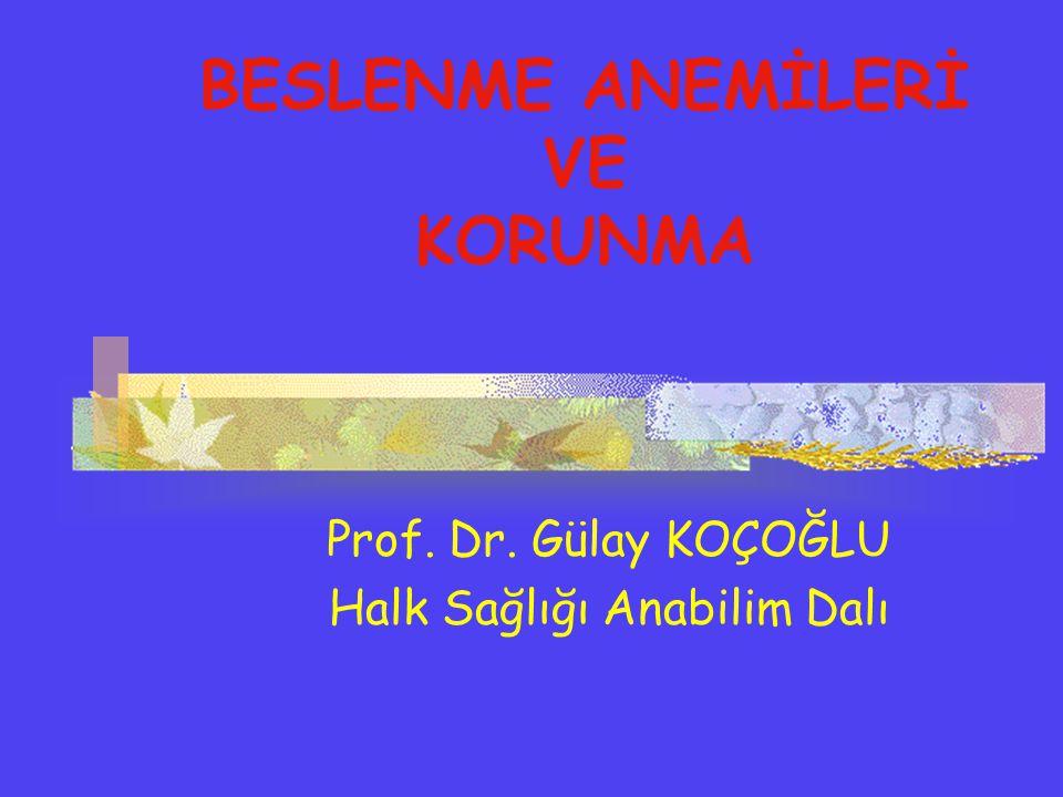 BESLENME ANEMİLERİ VE KORUNMA Prof. Dr. Gülay KOÇOĞLU Halk Sağlığı Anabilim Dalı