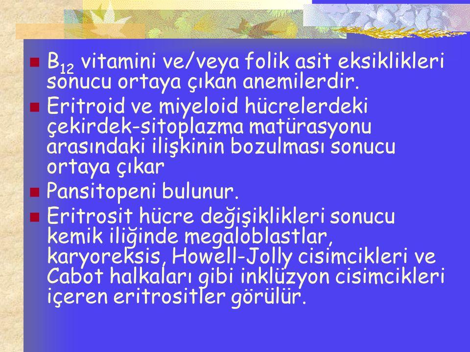 B 12 vitamini ve/veya folik asit eksiklikleri sonucu ortaya çıkan anemilerdir. Eritroid ve miyeloid hücrelerdeki çekirdek-sitoplazma matürasyonu arası