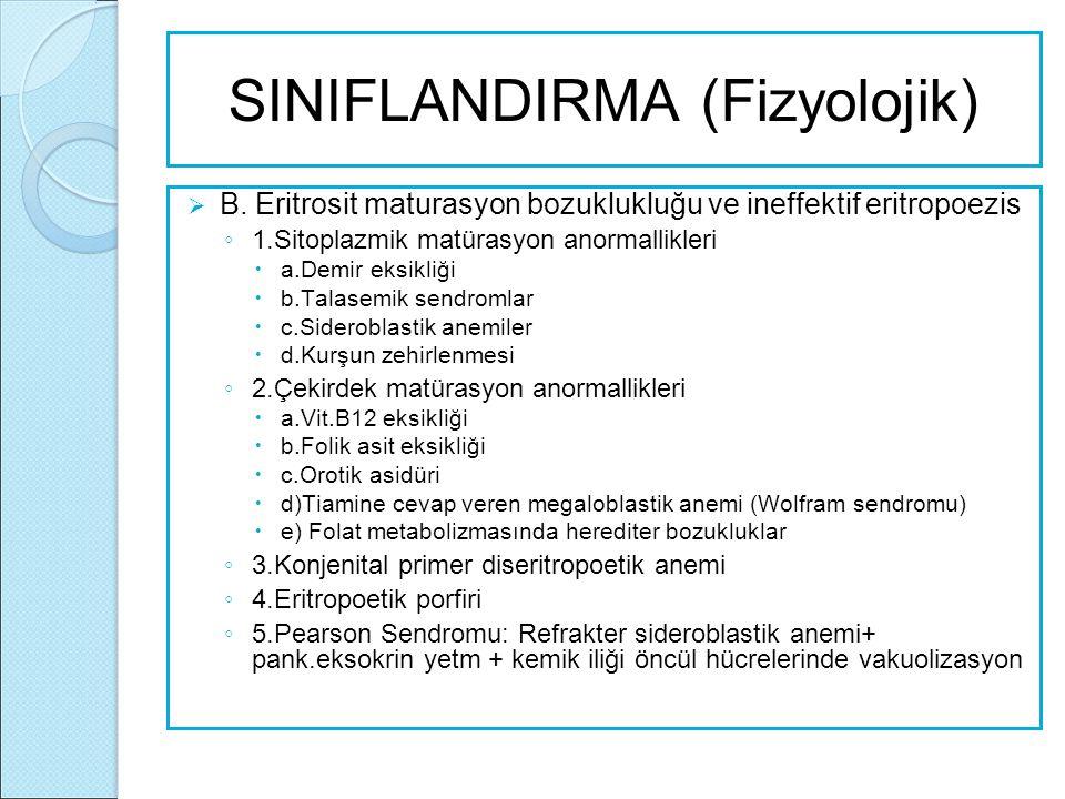 SINIFLANDIRMA (Fizyolojik)  B. Eritrosit maturasyon bozuklukluğu ve ineffektif eritropoezis ◦ 1.Sitoplazmik matürasyon anormallikleri  a.Demir eksik