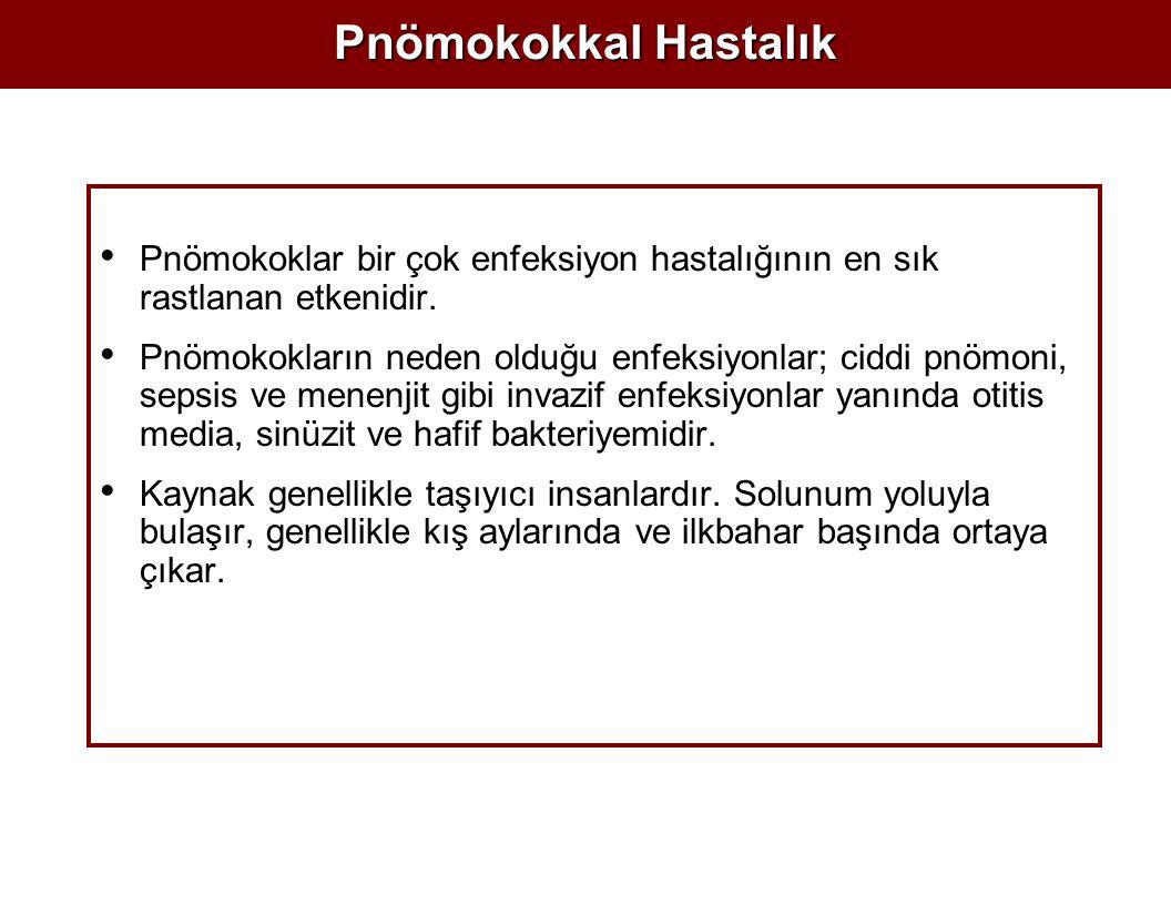 Pnömokokkal Hastalık Pnömokoklar bir çok enfeksiyon hastalığının en sık rastlanan etkenidir. Pnömokokların neden olduğu enfeksiyonlar; ciddi pnömoni,