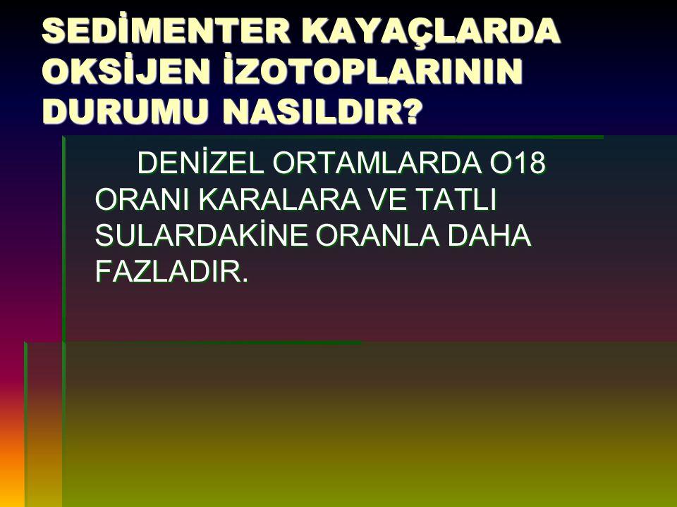 C 12 /C 13 ORANINA METAMORFİZMANIN ETKİSİ VARMIDIR .