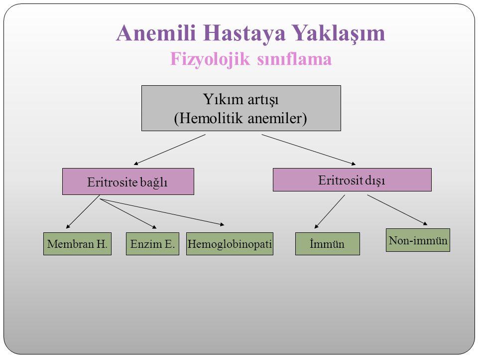Anemili Hastaya Yaklaşım Fizyolojik sınıflama Yıkım artışı (Hemolitik anemiler) Eritrosite bağlı Eritrosit dışı Membran H. Enzim E. Hemoglobinopatiİmm