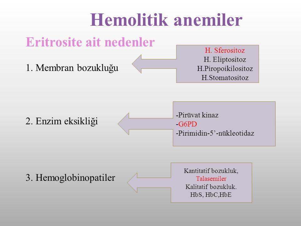 Hemolitik anemiler Eritrosite ait nedenler 1. Membran bozukluğu 2. Enzim eksikliği 3. Hemoglobinopatiler H. Sferositoz H. Eliptositoz H.Piropoikilosit