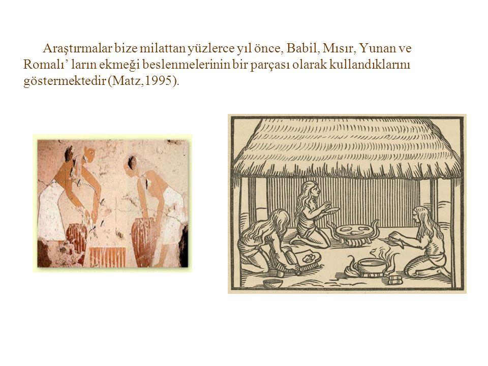Araştırmalar bize milattan yüzlerce yıl önce, Babil, Mısır, Yunan ve Romalı' ların ekmeği beslenmelerinin bir parçası olarak kullandıklarını göstermek