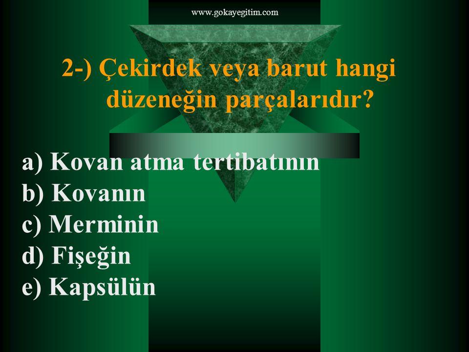 www.gokayegitim.com 2-) Çekirdek veya barut hangi düzeneğin parçalarıdır.